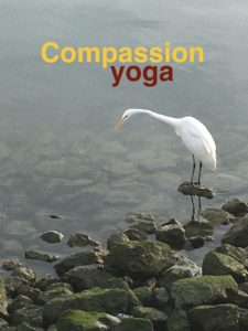 Virtual Compassion Yoga with Gillian